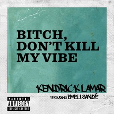 Bitch, Don't Kill My VIbe (Remix) by Kendrick Lamar