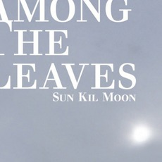 Among The Leaves (Limited Edition) mp3 Album by Sun Kil Moon
