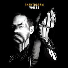 Voices mp3 Album by Phantogram