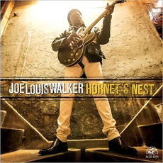 Hornet's Nest mp3 Album by Joe Louis Walker