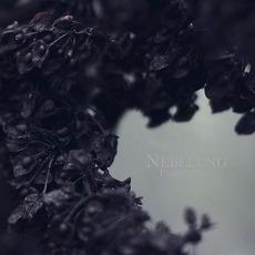 Palingenesis by Nebelung
