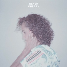 Blank Project mp3 Album by Neneh Cherry