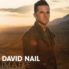 I'm A Fire mp3 Album by David Nail