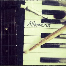 Allomerus by Allomerus
