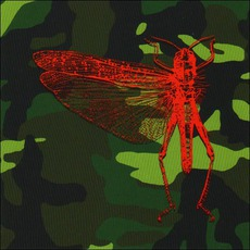 Well I'll Be A Monkey's Uncle mp3 Single by The Locust