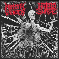 Hatred Surge / Mammoth Grinder by Various Artists