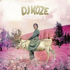 Amygdala by DJ Koze