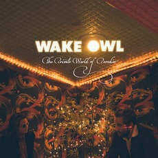 The Private World Of Paradise mp3 Album by Wake Owl