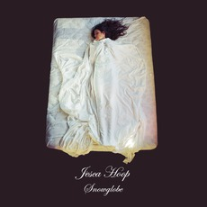 Snowglobe mp3 Album by Jesca Hoop