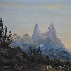 Apocalypse mp3 Album by Bill Callahan