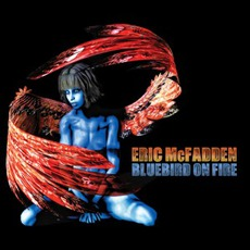 Bluebird Of Fire mp3 Album by Eric McFadden