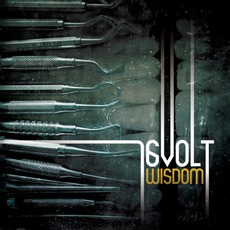 Wisdom (Remastered) mp3 Album by 16volt