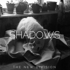 Shadows mp3 Album by The New Division