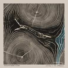 Rivers In The Wasteland mp3 Album by NEEDTOBREATHE