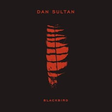 Blackbird mp3 Album by Dan Sultan