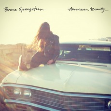 American Beauty by Bruce Springsteen