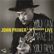 You Can Make It If You Try by John Primer & The Teardrops