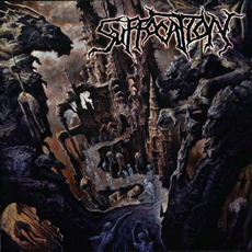 Souls To Deny mp3 Album by Suffocation