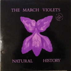 Natural History mp3 Album by The March Violets