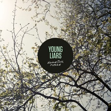 Homesick Future mp3 Album by Young Liars