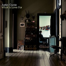What Is Love For by Justin Currie