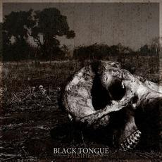 Falsifier mp3 Album by Black Tongue