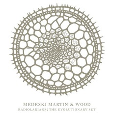 Radiolarians: The Evolutionary Set by Medeski Martin And Wood