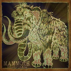 Polymorphism by Mammoth