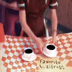 Favorite Waitress mp3 Album by The Felice Brothers