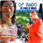Spirit Of Budo: The Power Of Balance