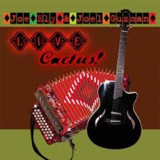 Live Cactus!