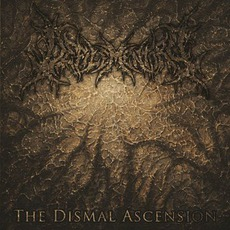 The Dismal Ascension