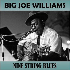 Nine String Blues by Big Joe Williams