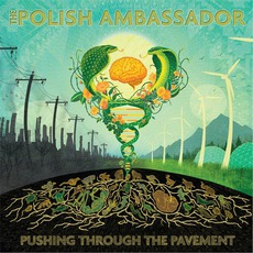 Pushing Through The Pavement mp3 Album by The Polish Ambassador