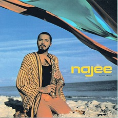 Najee's Theme mp3 Album by Najee