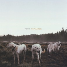 The Albatross by Foxing