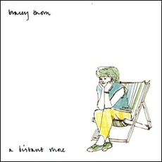 A Distant Shore mp3 Album by Tracey Thorn