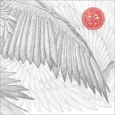 Angels & Devils mp3 Album by The Bug