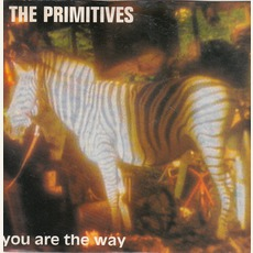 You Are The Way mp3 Album by The Primitives