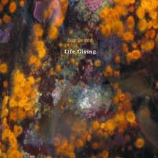 Life Giving mp3 Album by Dan Pound