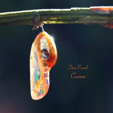 Cocoon mp3 Album by Dan Pound