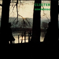Sowiesoso (Re-Issue) mp3 Album by Cluster