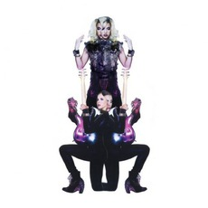 Plectrumelectrum mp3 Album by Prince & 3RDEYEGIRL
