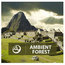 Ambient Forest mp3 Compilation by Various Artists