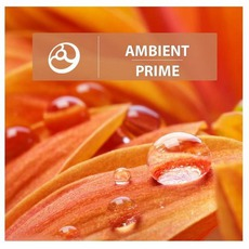 Ambient Prime mp3 Compilation by Various Artists