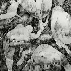 The Last Dawn by MONO