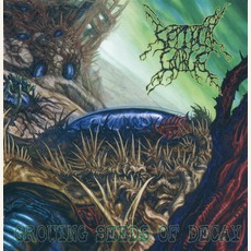 Growing Seeds Of Decay (Re-Issue)