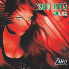 Zillo Club Hits 12 by Various Artists
