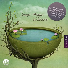 Deep Magic Waters, Volume Four by Various Artists