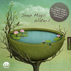 Deep Magic Waters, Volume One by Various Artists